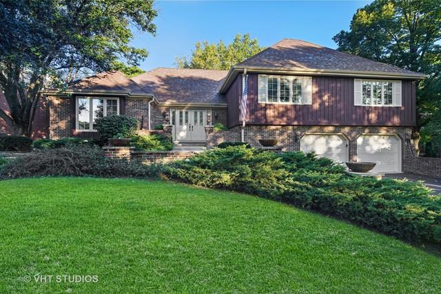 134 Saddle Brook Drive, Oak Brook, IL 60523 (MLS #10094918) :: The Dena Furlow Team - Keller Williams Realty