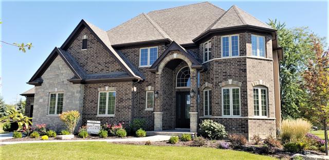 3 Pinnacle Court, Naperville, IL 60565 (MLS #10096699) :: HomesForSale123.com