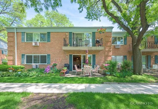 710 E Algonquin Road J110, Arlington Heights, IL 60005 (MLS #10097156) :: Baz Realty Network | Keller Williams Preferred Realty