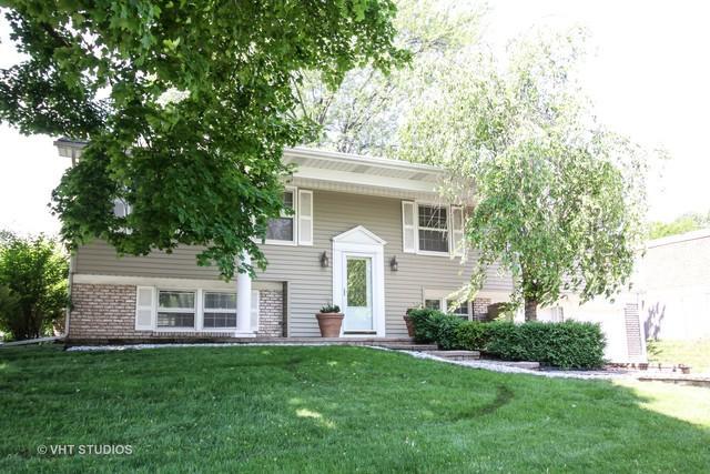 384 Regent Drive, Buffalo Grove, IL 60089 (MLS #10097309) :: The Dena Furlow Team - Keller Williams Realty