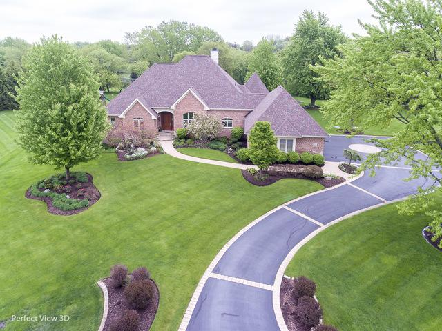 20045 N Deer Chase Court, Deer Park, IL 60010 (MLS #10097385) :: The Jacobs Group