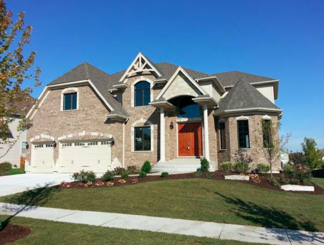 3124 Deering Bay Drive, Naperville, IL 60564 (MLS #10098174) :: The Dena Furlow Team - Keller Williams Realty