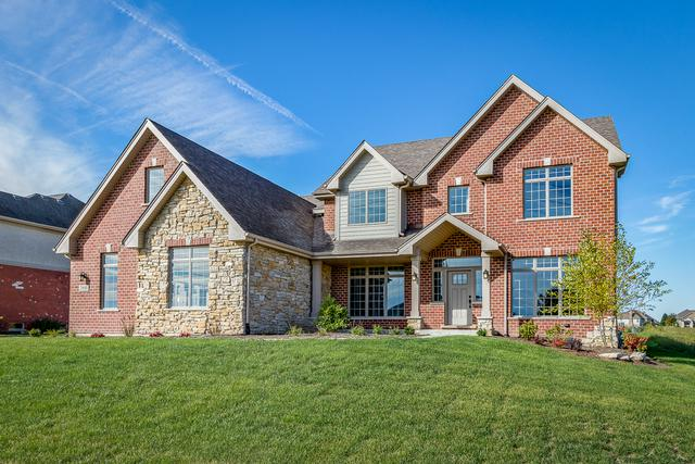 20688 Grand Haven Drive, Frankfort, IL 60423 (MLS #10098445) :: Baz Realty Network | Keller Williams Preferred Realty