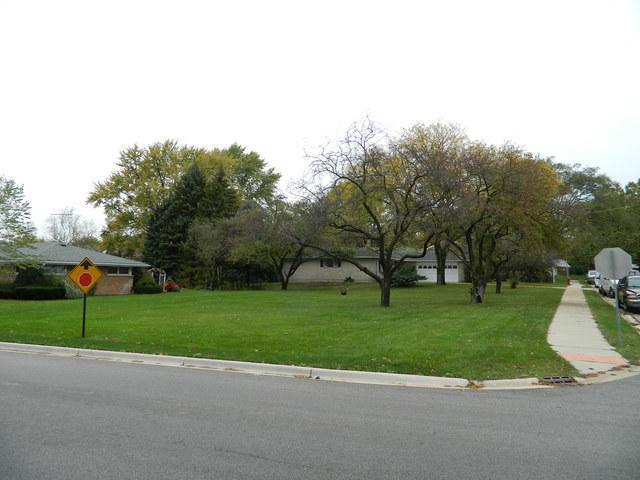 0 Lilac Lane, North Aurora, IL 60542 (MLS #10098446) :: The Dena Furlow Team - Keller Williams Realty