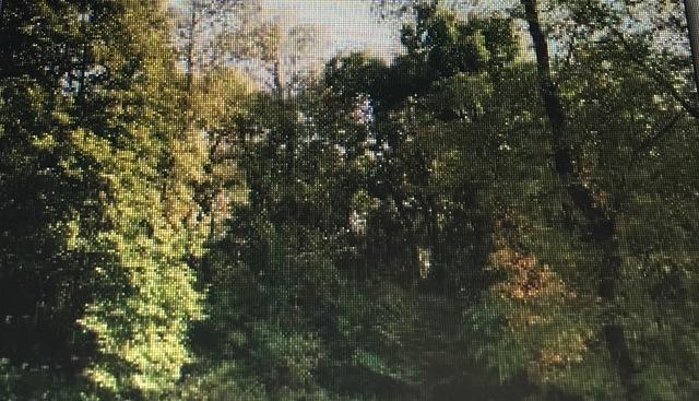 Lot 23 River Ridge Lane, Sandwich, IL 60548 (MLS #10098540) :: Baz Realty Network | Keller Williams Preferred Realty