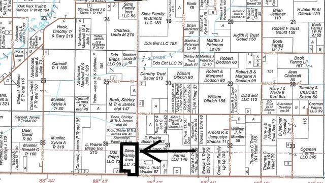 Lot 3 County Line Road, Capron, IL 61012 (MLS #10099102) :: The Dena Furlow Team - Keller Williams Realty