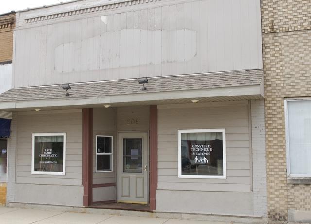 206 Main Avenue, Ladd, IL 61329 (MLS #10099144) :: Ani Real Estate