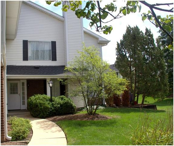 546 Willowcreek Court, Clarendon Hills, IL 60514 (MLS #10099198) :: Baz Realty Network   Keller Williams Preferred Realty
