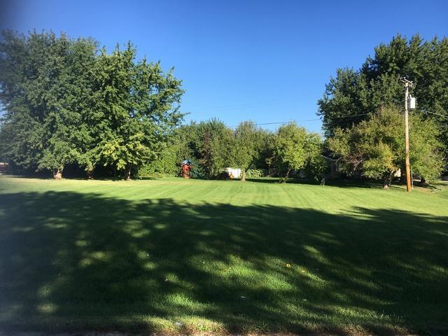 1024 Suzy Street, Lake Holiday, IL 60548 (MLS #10099992) :: The Dena Furlow Team - Keller Williams Realty