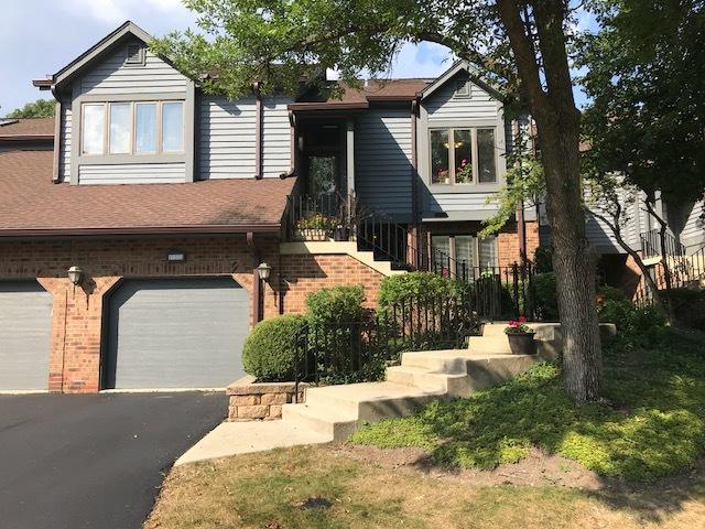 1040 Braemoor Drive, Downers Grove, IL 60515 (MLS #10100347) :: The Dena Furlow Team - Keller Williams Realty