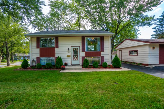 3607 John Street, Steger, IL 60475 (MLS #10101375) :: The Dena Furlow Team - Keller Williams Realty