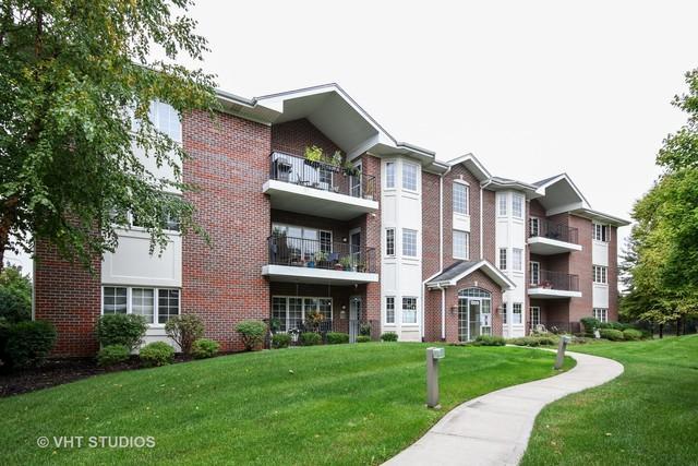 13079 Laurel Glen Court #203, Palos Heights, IL 60463 (MLS #10101687) :: The Dena Furlow Team - Keller Williams Realty