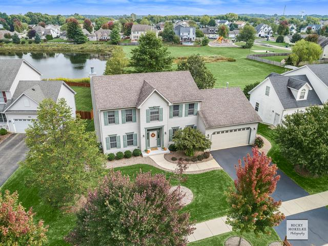 1338 Coral Berry Court, Yorkville, IL 60560 (MLS #10103575) :: Ani Real Estate