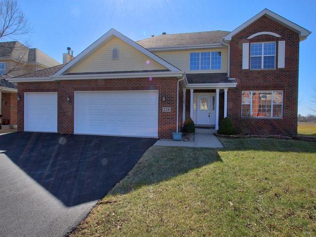 226 Poplar Lane, Beecher, IL 60401 (MLS #10103653) :: Ryan Dallas Real Estate