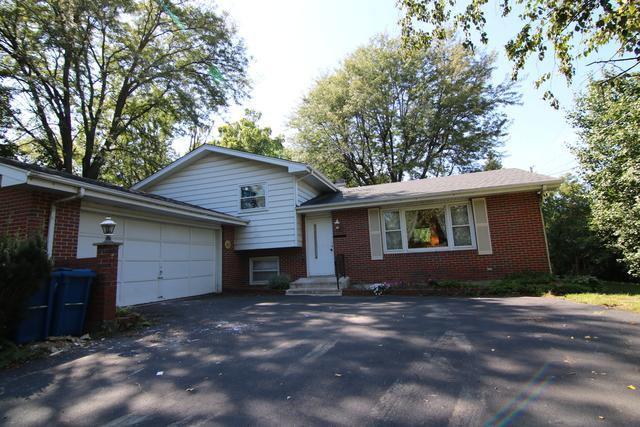 4312 Ivanhoe Avenue, Lisle, IL 60532 (MLS #10103972) :: The Dena Furlow Team - Keller Williams Realty
