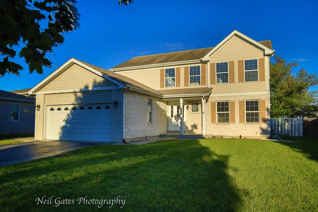 186 Steamboat Lane, Bolingbrook, IL 60490 (MLS #10104370) :: The Dena Furlow Team - Keller Williams Realty