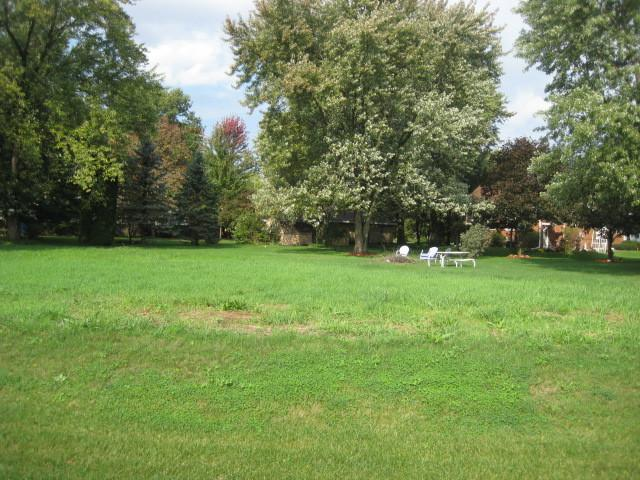 lot 2 Washington Street, Braidwood, IL 60408 (MLS #10105407) :: The Dena Furlow Team - Keller Williams Realty