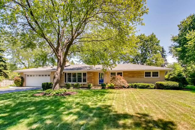 1107 Oak Avenue, Prospect Heights, IL 60070 (MLS #10105545) :: The Dena Furlow Team - Keller Williams Realty