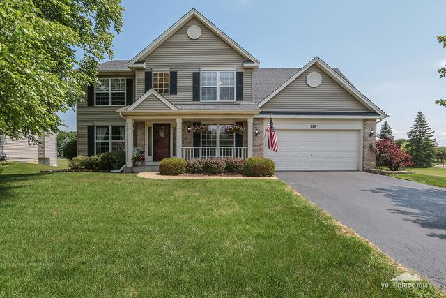 228 Parkside Lane, Oswego, IL 60543 (MLS #10106536) :: John Lyons Real Estate