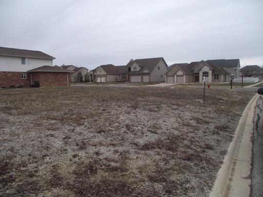250 Maple Street, Beecher, IL 60401 (MLS #10106898) :: Ryan Dallas Real Estate