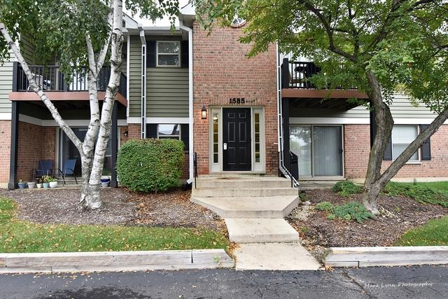 1585 Raymond Drive #103, Naperville, IL 60563 (MLS #10108281) :: Baz Realty Network | Keller Williams Preferred Realty