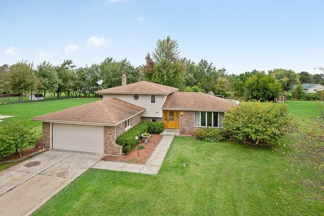 2846 E Pine Drive, Crete, IL 60417 (MLS #10109113) :: John Lyons Real Estate