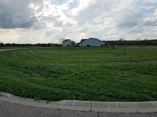 Lot 66 Pebble Creek Court, Wonder Lake, IL 60097 (MLS #10109115) :: The Dena Furlow Team - Keller Williams Realty