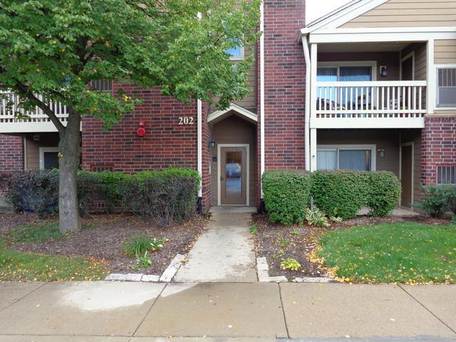202 Glengarry Drive #108, Bloomingdale, IL 60108 (MLS #10109177) :: The Dena Furlow Team - Keller Williams Realty