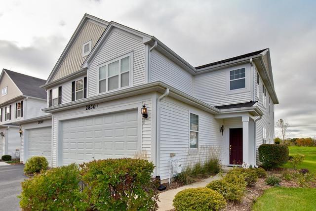 2830 Cattail Court F, Wauconda, IL 60084 (MLS #10110290) :: Ani Real Estate