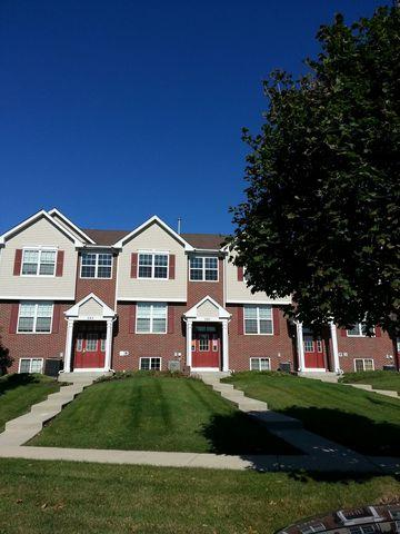 287 S Oak Creek Lane #287, Romeoville, IL 60446 (MLS #10110739) :: The Wexler Group at Keller Williams Preferred Realty