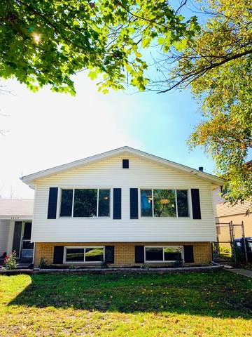 1217 Heather Road, Homewood, IL 60430 (MLS #10111335) :: The Wexler Group at Keller Williams Preferred Realty