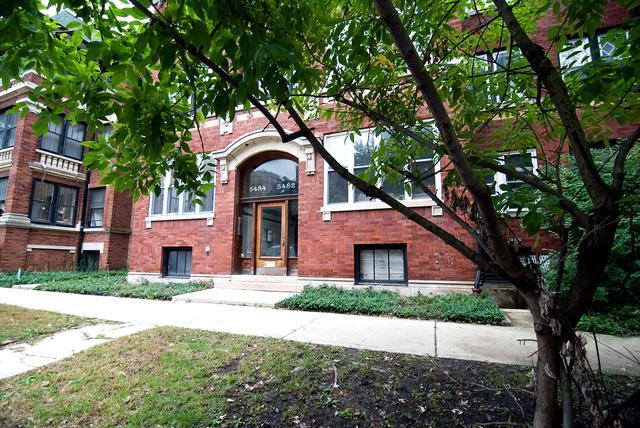 5482 S Everett Avenue #2, Chicago, IL 60615 (MLS #10111633) :: The Mattz Mega Group