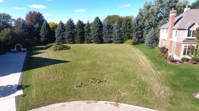 2515 Pine Cone Court, Naperville, IL 60565 (MLS #10111679) :: The Mattz Mega Group