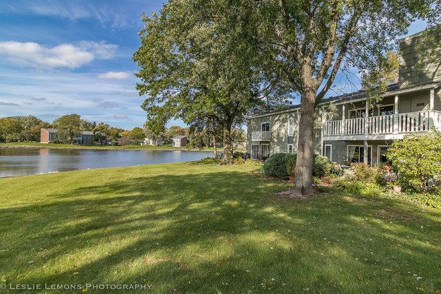 2091 Creekside Drive 2-2-1, Wheaton, IL 60189 (MLS #10111762) :: The Dena Furlow Team - Keller Williams Realty