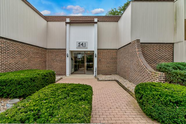 541 73rd Street N-103, Downers Grove, IL 60516 (MLS #10111777) :: The Dena Furlow Team - Keller Williams Realty