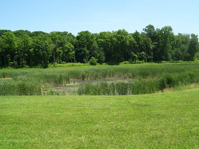 LOT 4 Deer Pond Drive, St. Charles, IL 60175 (MLS #10111823) :: The Dena Furlow Team - Keller Williams Realty