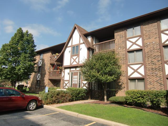 10408 Circle Drive #308, Oak Lawn, IL 60453 (MLS #10111960) :: The Wexler Group at Keller Williams Preferred Realty