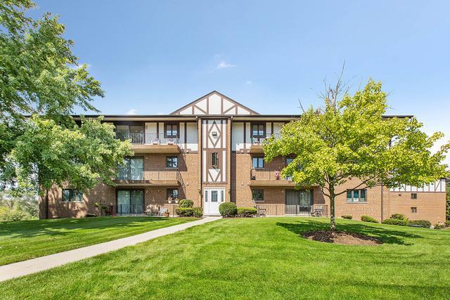 11030 S Theresa Circle 3A, Palos Hills, IL 60465 (MLS #10112013) :: The Wexler Group at Keller Williams Preferred Realty