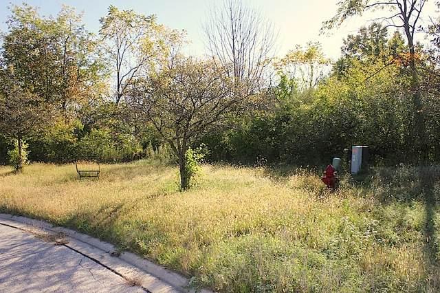 3104 Hawthorn Hill Lane, Carpentersville, IL 60110 (MLS #10112192) :: Jacqui Miller Homes