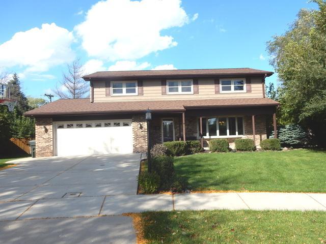 1208 W Palm Drive, Mount Prospect, IL 60056 (MLS #10112566) :: The Dena Furlow Team - Keller Williams Realty