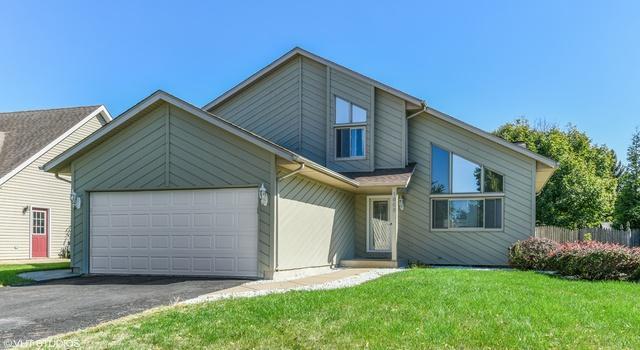 1606 N Overlook Drive, Joliet, IL 60431 (MLS #10112797) :: Domain Realty