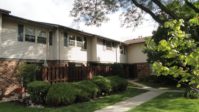 7306 Winthrop Way #1, Downers Grove, IL 60516 (MLS #10112801) :: The Dena Furlow Team - Keller Williams Realty