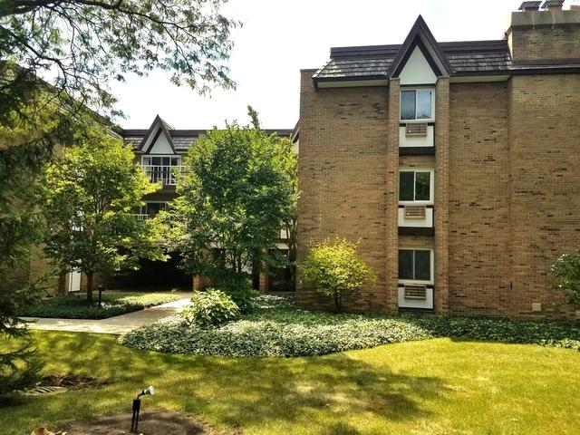 360 Claymoor Street 2F, Hinsdale, IL 60521 (MLS #10112836) :: The Wexler Group at Keller Williams Preferred Realty