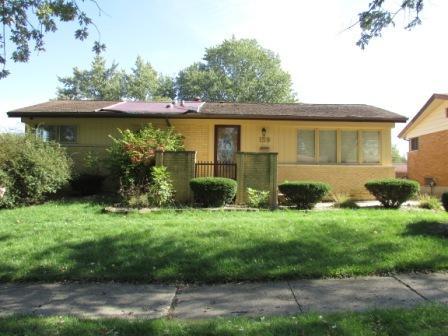 159 Mildred Lane, Chicago Heights, IL 60411 (MLS #10112837) :: The Dena Furlow Team - Keller Williams Realty