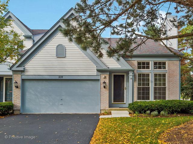531 Orleans Avenue, Naperville, IL 60565 (MLS #10113508) :: Baz Realty Network   Keller Williams Preferred Realty