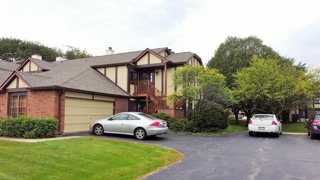 382 Sandhurst Circle #8, Glen Ellyn, IL 60137 (MLS #10113578) :: The Wexler Group at Keller Williams Preferred Realty
