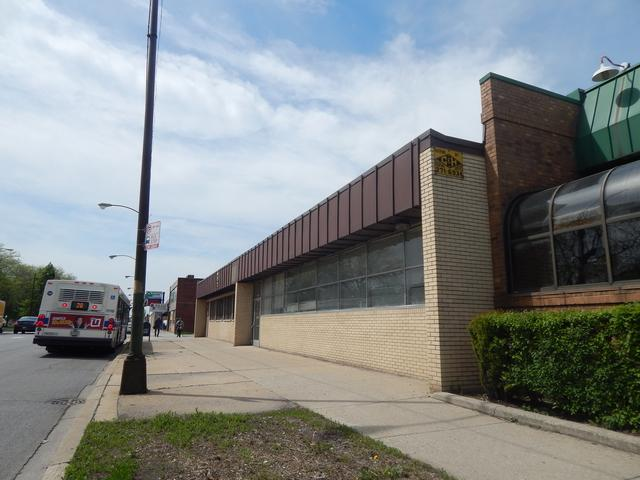 8750 Stony Island Avenue, Chicago, IL 60617 (MLS #10113641) :: The Dena Furlow Team - Keller Williams Realty