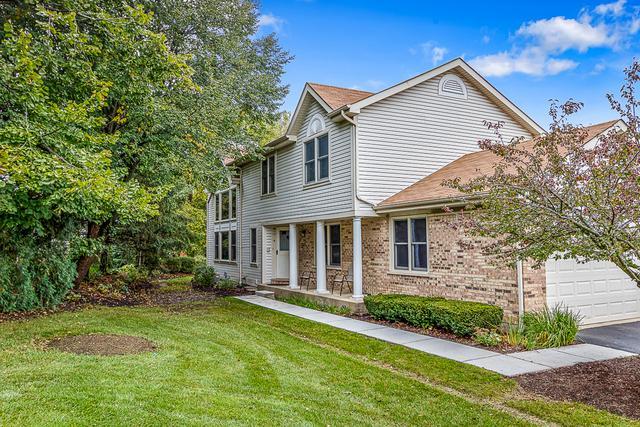 1060 Sweetflower Drive, Hoffman Estates, IL 60169 (MLS #10113774) :: The Dena Furlow Team - Keller Williams Realty