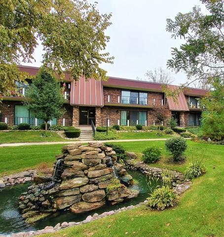 11139 S O'gorman Drive 2N, Palos Hills, IL 60465 (MLS #10113942) :: The Wexler Group at Keller Williams Preferred Realty