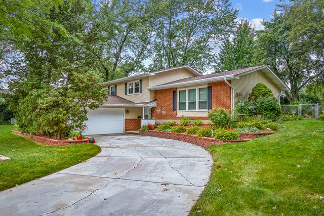 7240 Fairmount Avenue, Downers Grove, IL 60516 (MLS #10114145) :: The Wexler Group at Keller Williams Preferred Realty